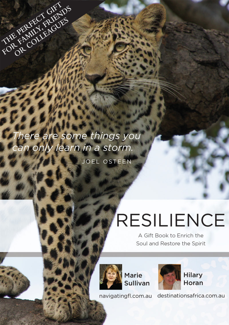 Resilience Cover